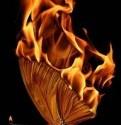 منفورترین و پست ترین زنان قرآنی و برخی از مصادیق امروزی آن